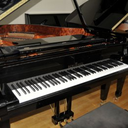 Schimmel Tradition 170 von 2005 in Black glossy