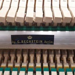 Euterpe EU112 von 2004 in Cherrywood matt